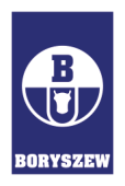 Boryszew_logo