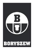 Boryszew logo